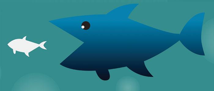 Big shark eating a little fish.